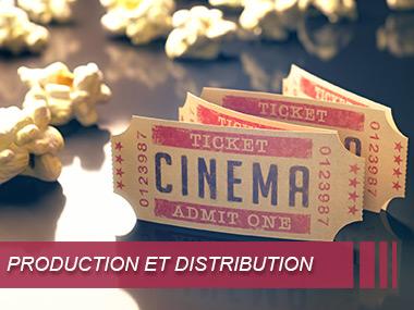 Secteur production et distribution cinématographique et audiovisuelle
